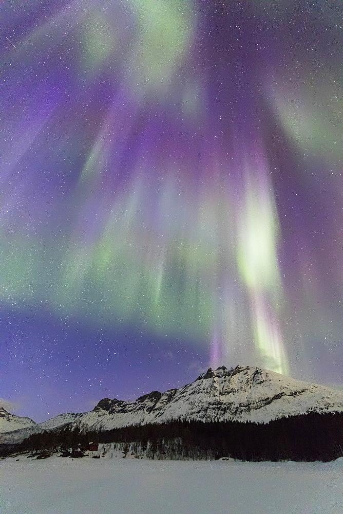 Northern Lights (Aurora borealis), Skoddebergvatnet, Grovfjord, Troms county, Lofoten Islands, Nordland, Norway, Europe - 1179-3363