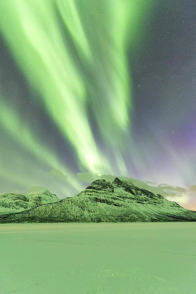 Northern Lights (Aurora borealis) on frozen lake Skoddebergvatnet, Grovfjord, Troms county, Lofoten Islands, Nordland, Norway, Europe - 1179-3365