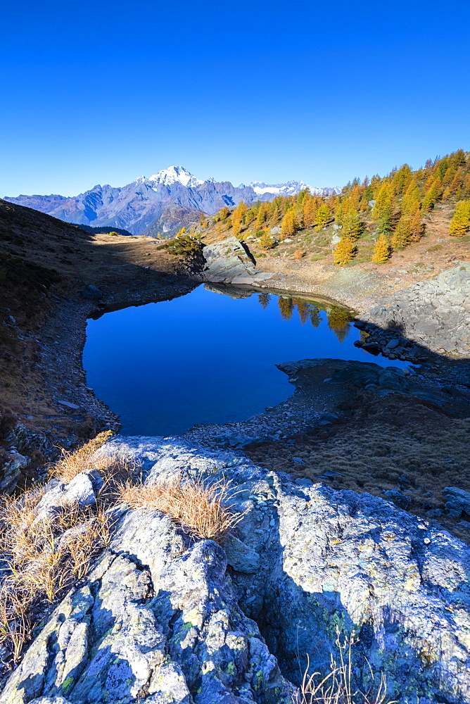 Lakes of Campagneda surrounded by colorful woods during autumn, Valmalenco, Valtellina, Sondrio province, Lombardy, Italy, Europe
