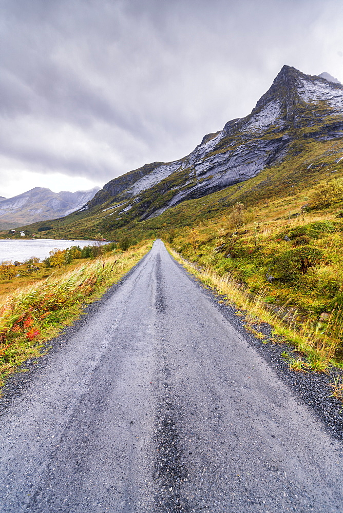 Coastal road in between sea and mountains, Fredvang, Nordland county, Lofoten Islands, Norway, Europe