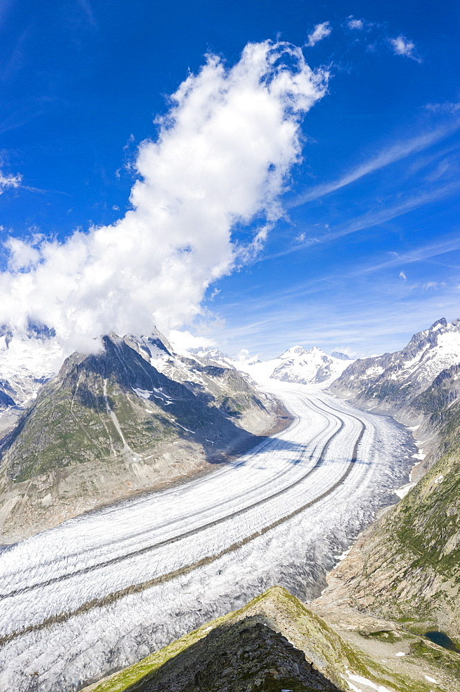 Panoramic of the ice tongue of Aletsch Glacier seen from Eggishorn viewpoint, Bernese Alps, canton of Valais, Switzerland, Europe