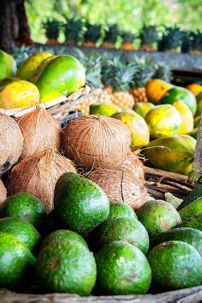 Fresh coconut and tropical fruit in straw baskets, La Gaulette, Black River district, Indian Ocean, Mauritius
