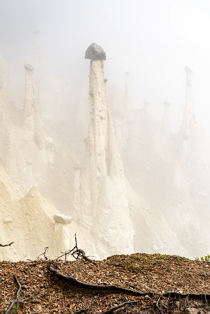Rock pinnacles of the Earth Pyramids emerging from fog, Perca (Percha), province of Bolzano, South Tyrol, Italy, Europe