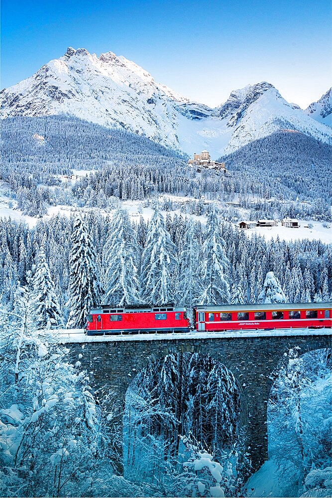 Bernina Express train in the winter forest covered with snow surrounding Tarasp Castle, Engadine, Graubunden Canton, Switzerland,  Europe - 1179-4905