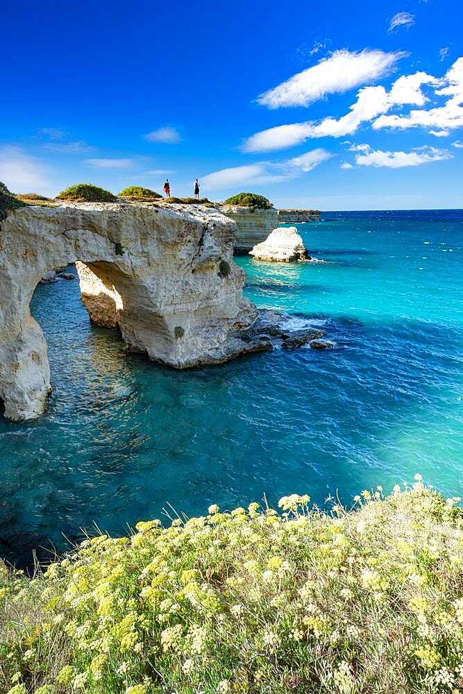 Tourists admiring the sea from natural stone arch on cliff, Torre Sant'Andrea, Lecce province, Salento, Apulia, Italy, Europe - 1179-4977