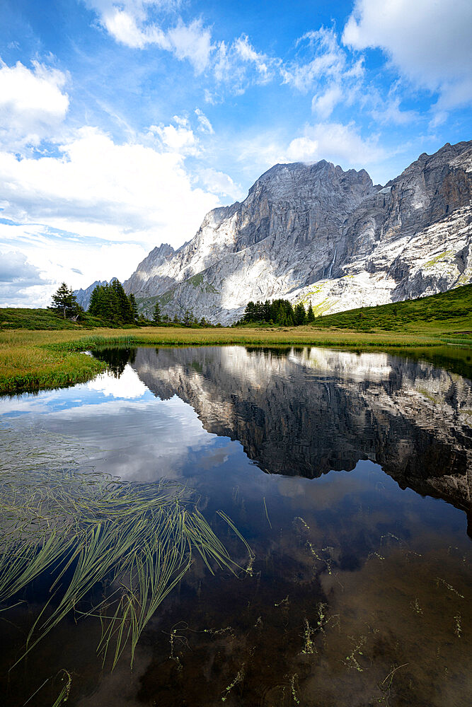 Rocky peak of Wellhorn mountain reflected in water in summer, Grosse Scheidegg Pass, Bernese Alps, Canton of Bern, Switzerland - 1179-5008