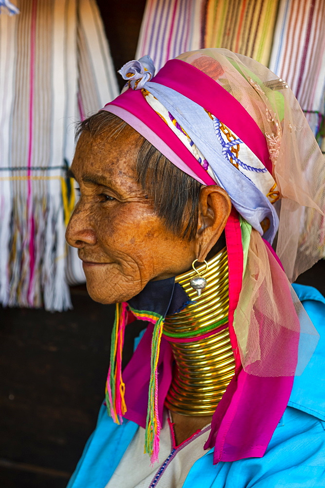 Portrait of a Padaung woman (Giraffe woman) (Long-necked woman), Loikaw area, Panpet, Kayah state, Myanmar (Burma), Asia