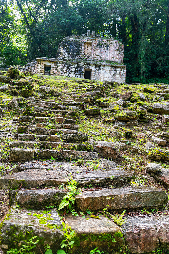 Archaeological Maya site of Yaxchilan in the jungle of Chiapas, Mexico, North America - 1184-5575