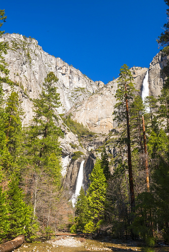 Yosemite Falls, Yosemite National Park, UNESCO World Heritage Site, California, United States of America, North America