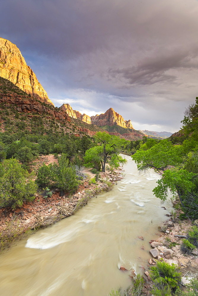 View down the Virgin River to the Watchman