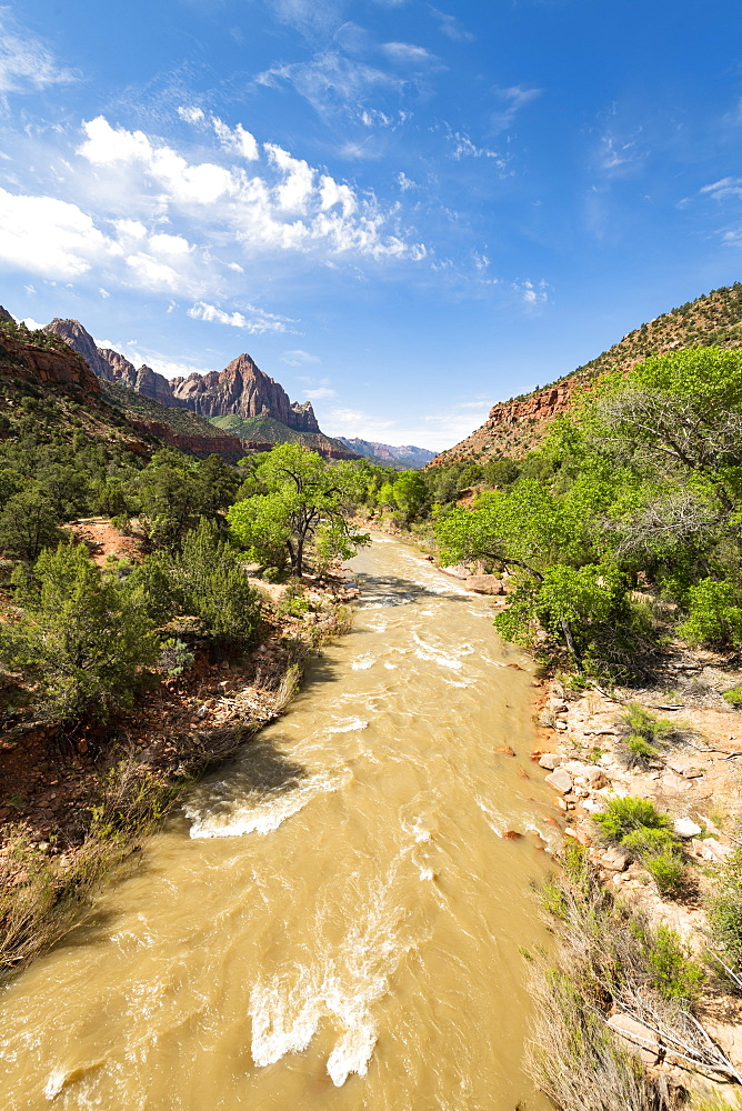 View of the Watchman down the Virgin River, Zion National Park, Utah, United States of America, North America