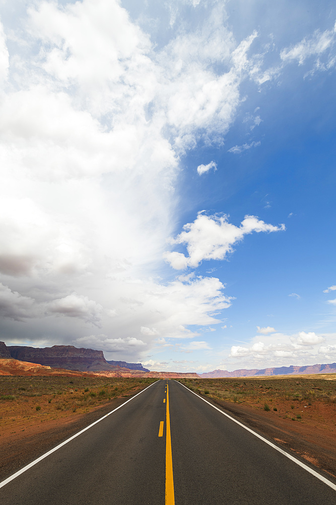 Highway on the North Rim of the Grand Canyon, Arizona, United States of America, North America