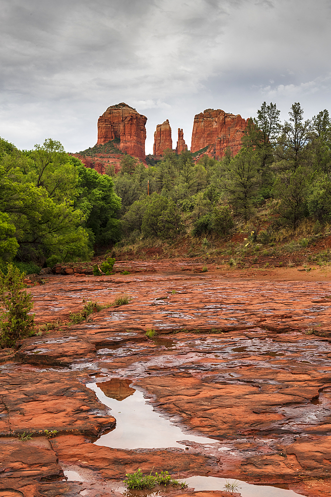 Cathedral Rock seen from Red Rock State Park, Sedona, Arizona, United States of America, North America