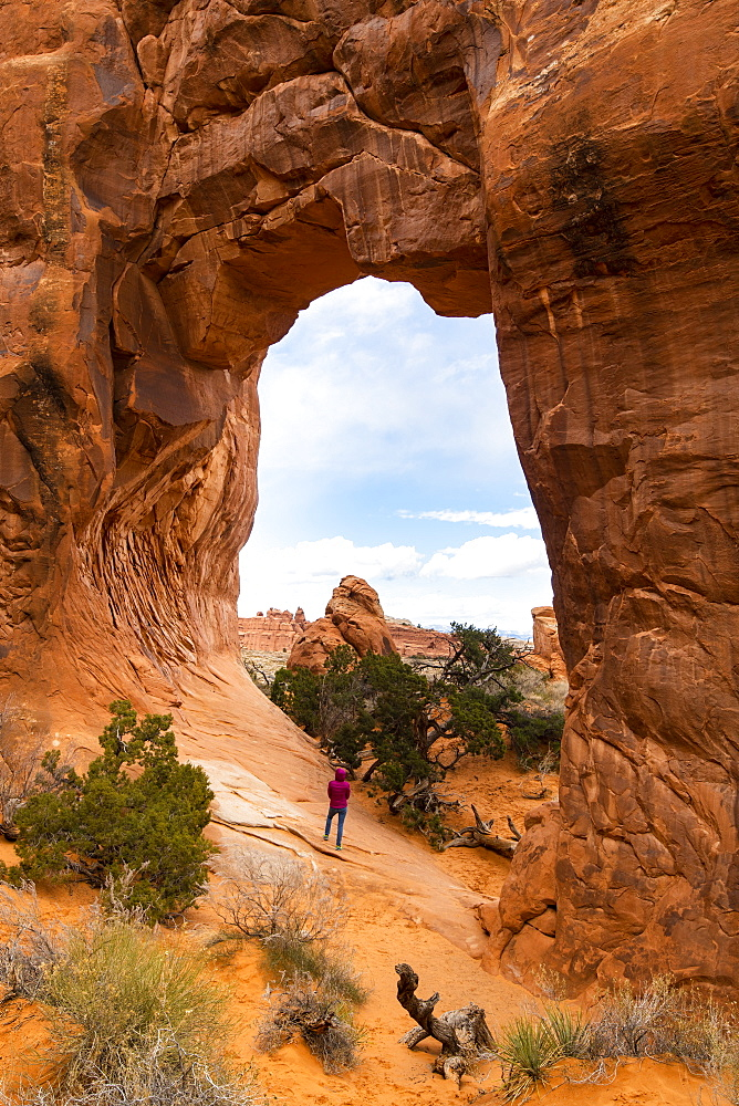 Arches National Park, Moab, Utah, United States of America, North America - 1186-231