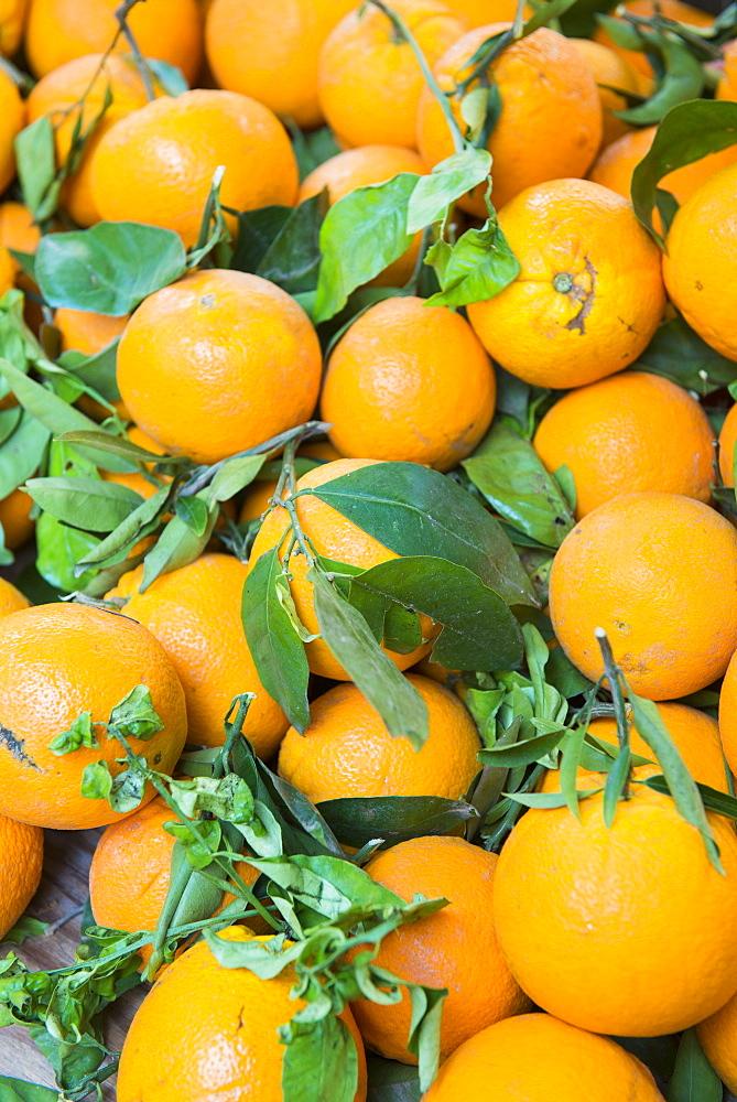 Oranges, Aix en Provence, Bouches du Rhone, Provence, Provence-Alpes-Cote d'Azur, France, Europe