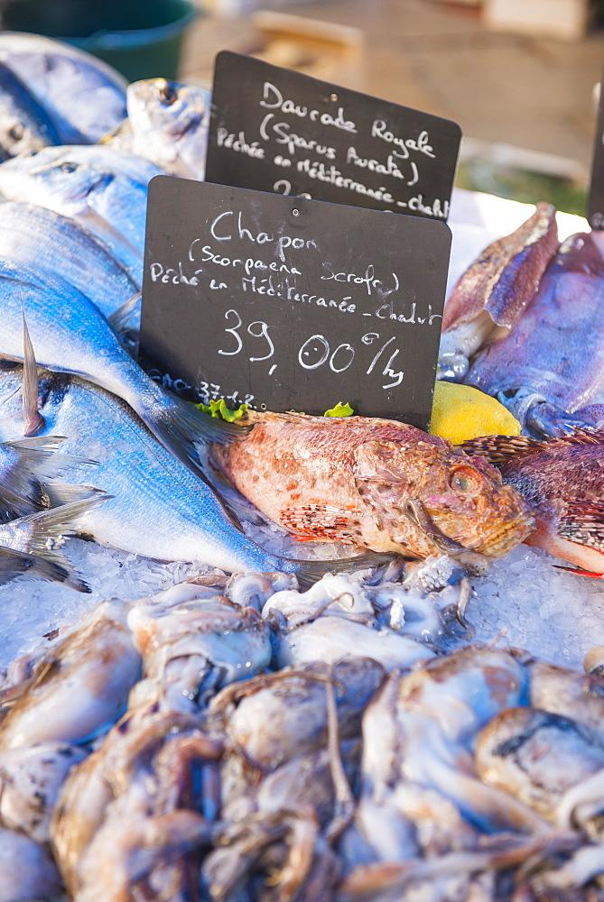 Fish market in Aix en Provence, Bouches du Rhone, Provence, Provence-Alpes-Cote d'Azur, France, Europe