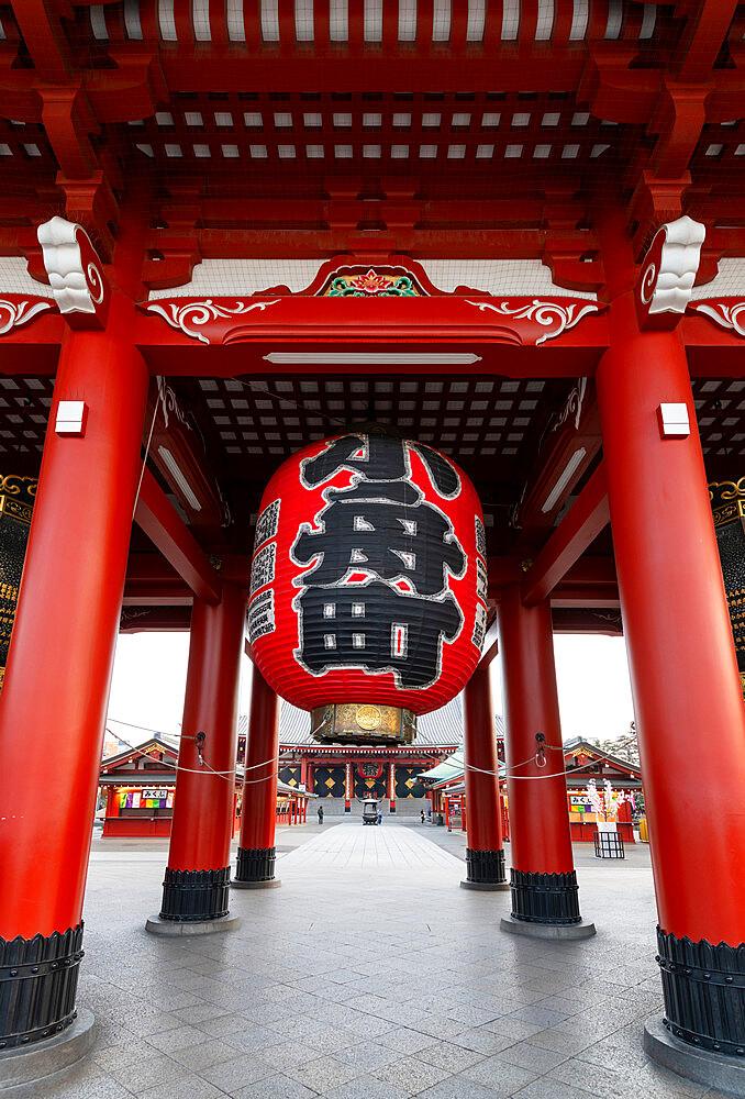 Sensoji Temple in Cherry blossom season - 1186-772