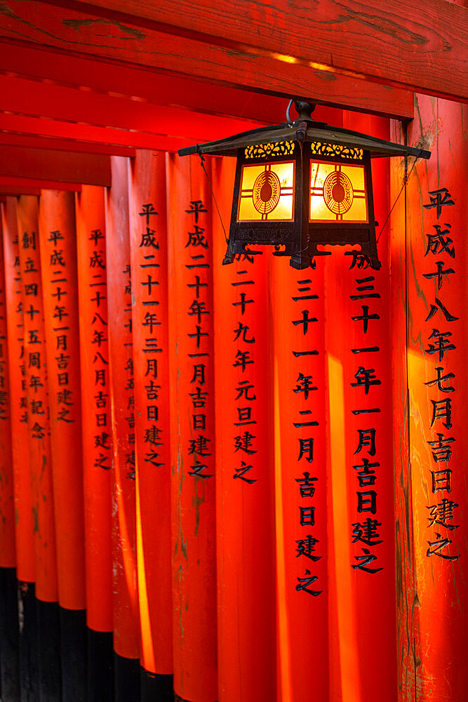 Fushimi Inari Taisha shrine and torii gates - 1186-811
