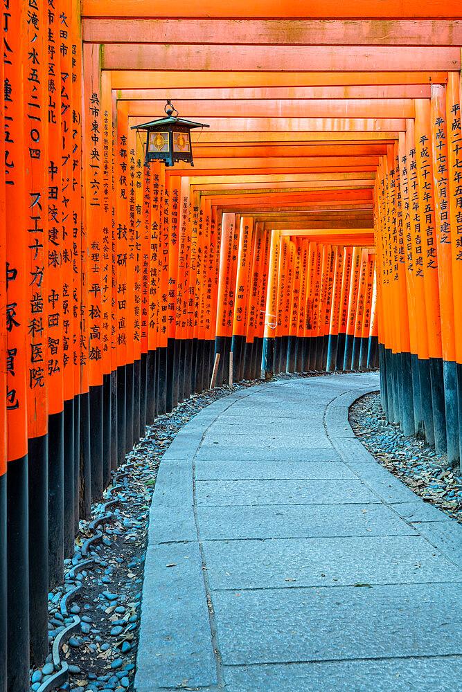 Fushimi Inari Taisha shrine and torii gates - 1186-814
