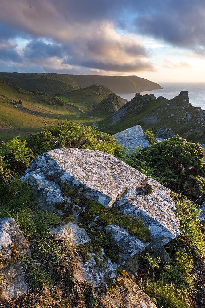 Valley of the Rocks in summer, Exmoor, Devon, England, United Kingdom, Europe