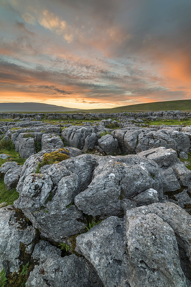 Limestone pavement at sunset, Ingleton, Yorkshire Dales, Yorkshire, England, United Kingdom, Europe