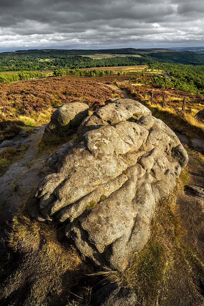 Rock and heather moorland, Surprise View, Peak District National Park, Derbyshire, England, United Kingdom, Europe