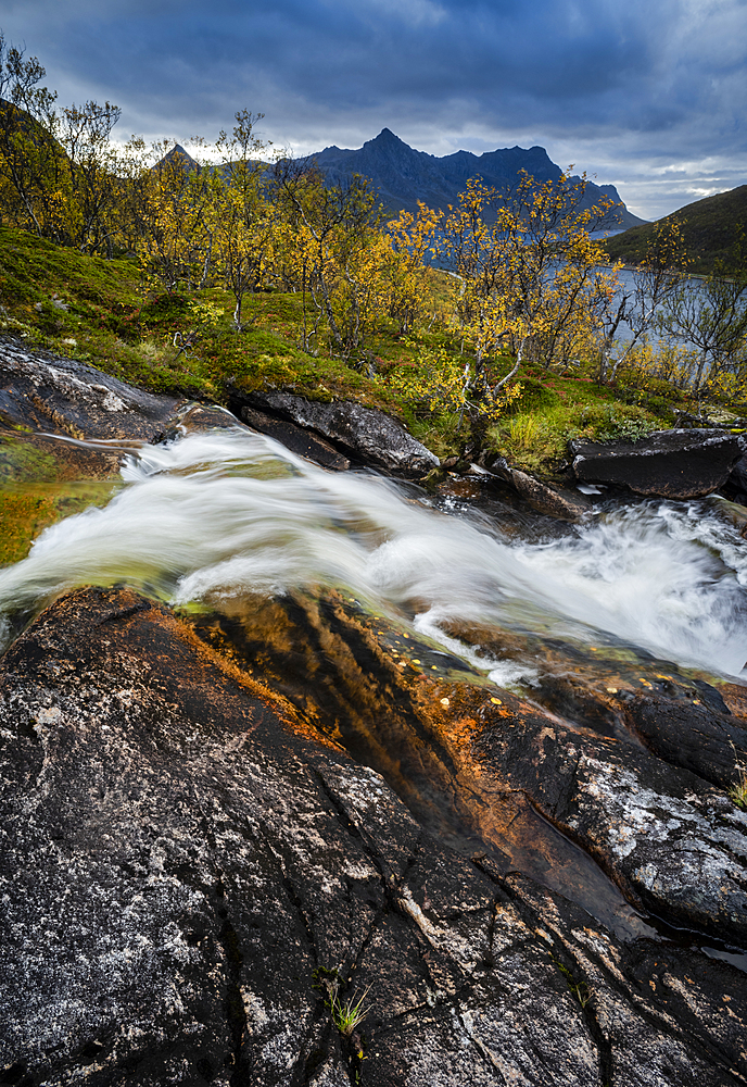 Waterfall and autumn colour in Anderdalen National Park, Senja, Norway.