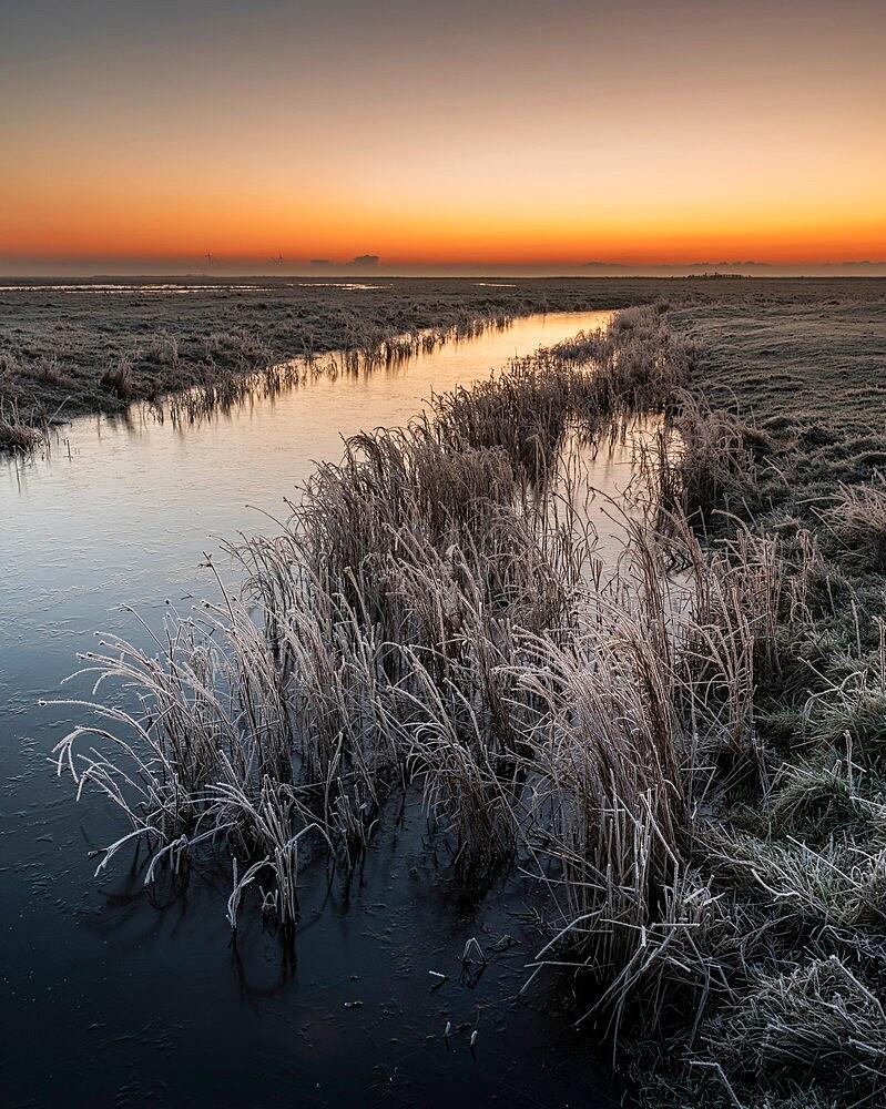 Dawn, Elmley NNR, Isle of Sheppey, Kent, England, winter - 1200-416