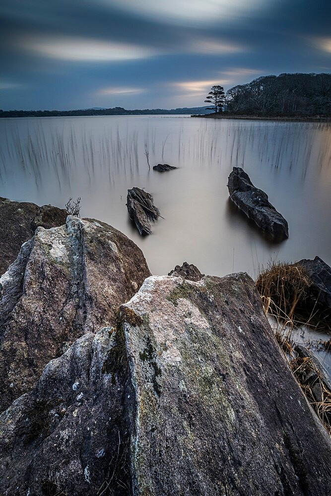 Muckrooss Lake at dawn, Killarney, County Kerry, Munster. - 1200-436