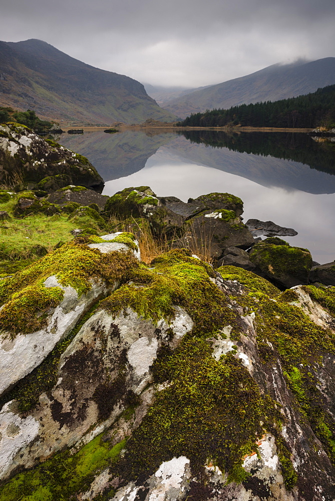 Moss covered rock, mountains and reflections in Cummeenduff Lake, Black Valley, Killarney, County Kerry, Ireland, British Isles