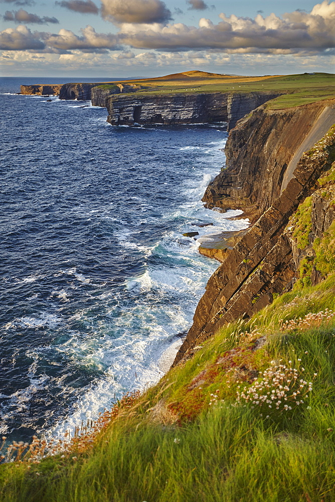 The cliffs at Loop Head, near Kilkee, County Clare, Munster, Republic of Ireland, Europe - 1202-112