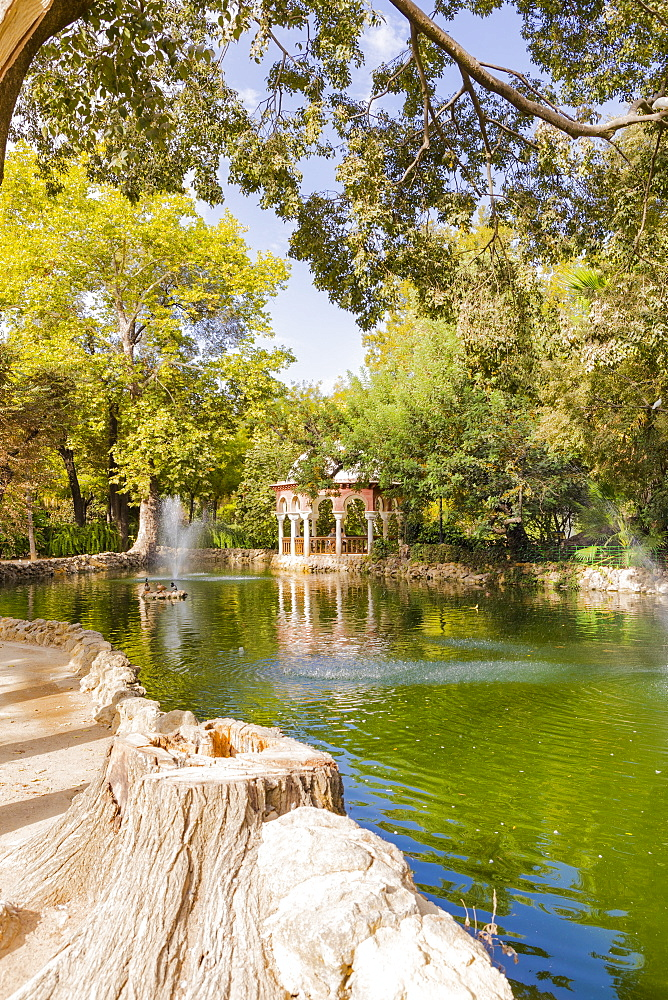 Maria Luisa Park, Seville, Andalusia, Spain, Europe - 1207-213