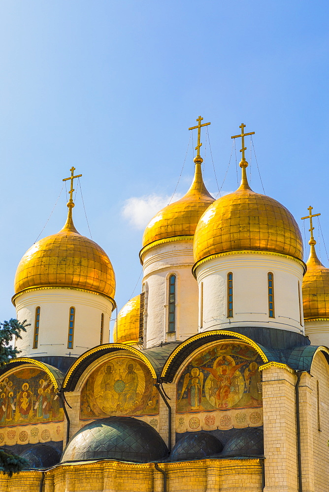 The domes of the The Cathedral of the Annunciation inside the Kremlin, UNESCO World Heritage Site, Moscow, Russia, Europe - 1207-459
