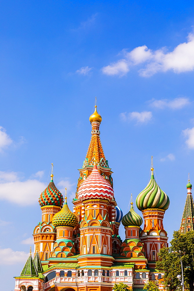 The Cathedral of Vasily the Blessed (St. Basil's Cathedral), Red Square, UNESCO World Heritage Site, Moscow, Russia, Europe - 1207-464