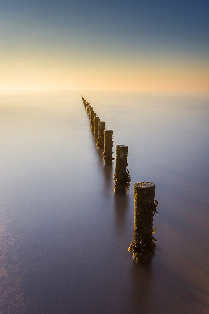 Groynes, Brean Beach, Somerset. - 1209-244