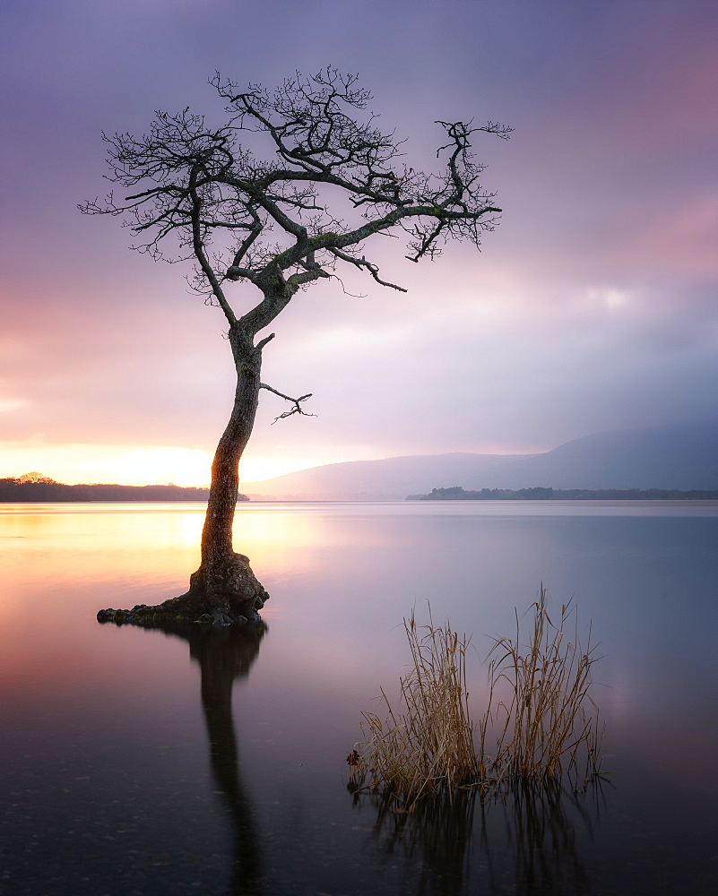 Loch Lomond at sunset, Scotland, United Kingdom, Europe