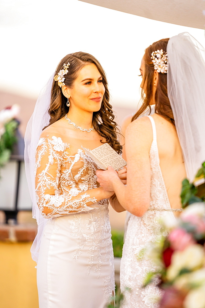 Bride exchanging vows, Corona, California, United States of America, North America