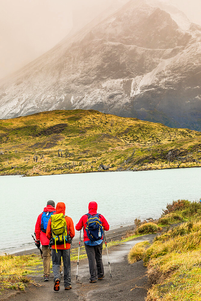 Enjoying the peaceful and beautiful scenery of Torres del Paine National Park, Patagonia, Chile - 1218-994
