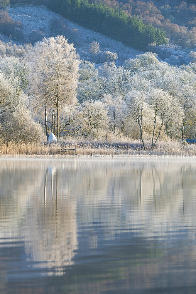 Loch Ard partially frozen over and a hoar frost around Aberfoyle in the Loch Lomond and the Trossachs National Park in mid-winter, Stirling District, Scotland, United Kingdom, Europe - 1228-175