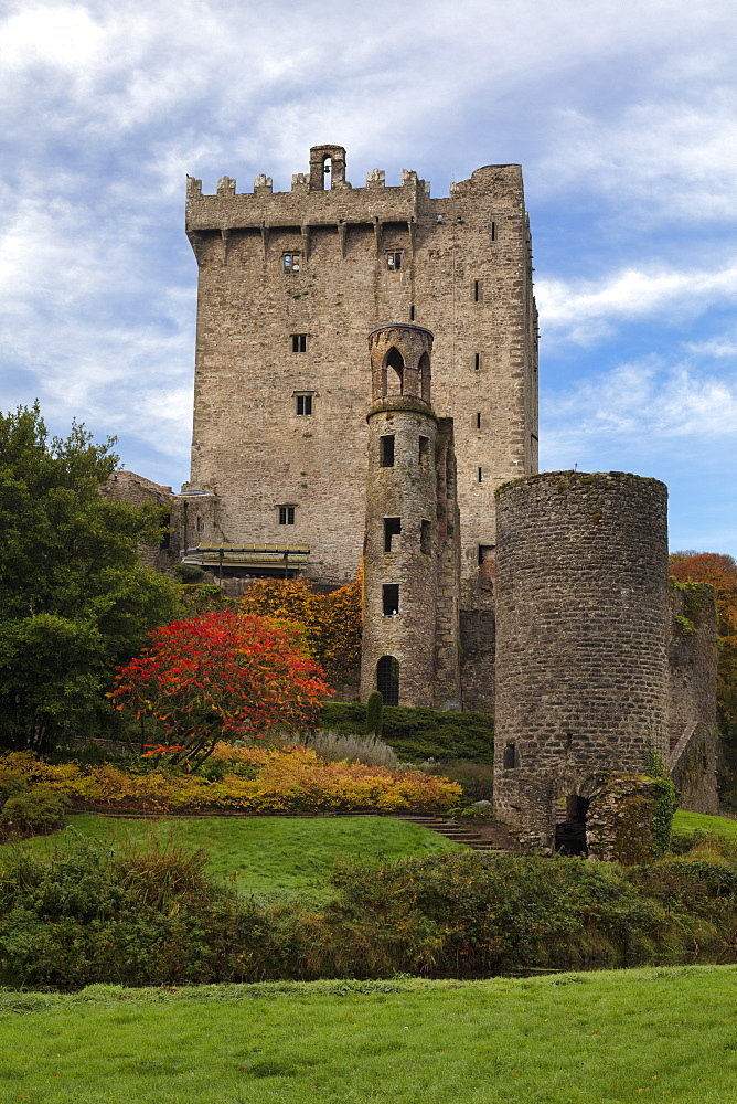 Bunratty Castle, County Cork, Munster, Republic of Ireland, Europe - 1240-294