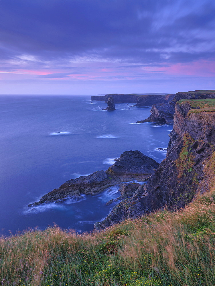 Loop Head, County Clare, Munster, Republic of Ireland, Europe - 1240-371