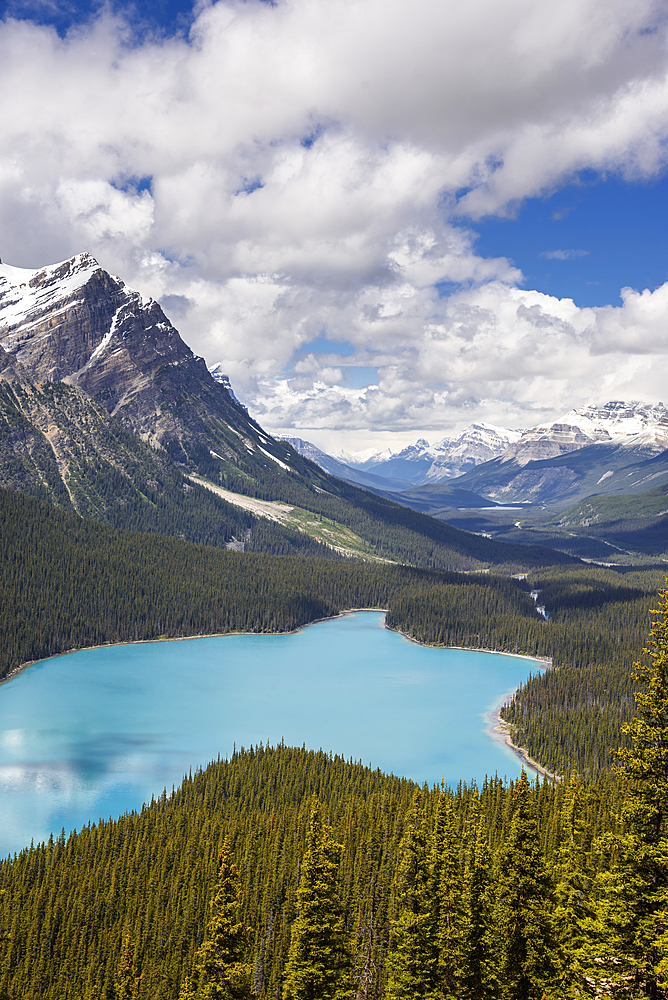 Peyto Lake, Banff National Park, UNESCO World Heritage Site, Alberta, Canada, North America