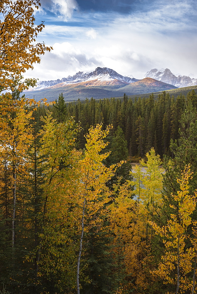 Mountain range at Morant's Curve in autumn foliage, Banff National Park, UNESCO World Heritage Site, Alberta, Rocky Mountains, Canada, North America - 1241-198