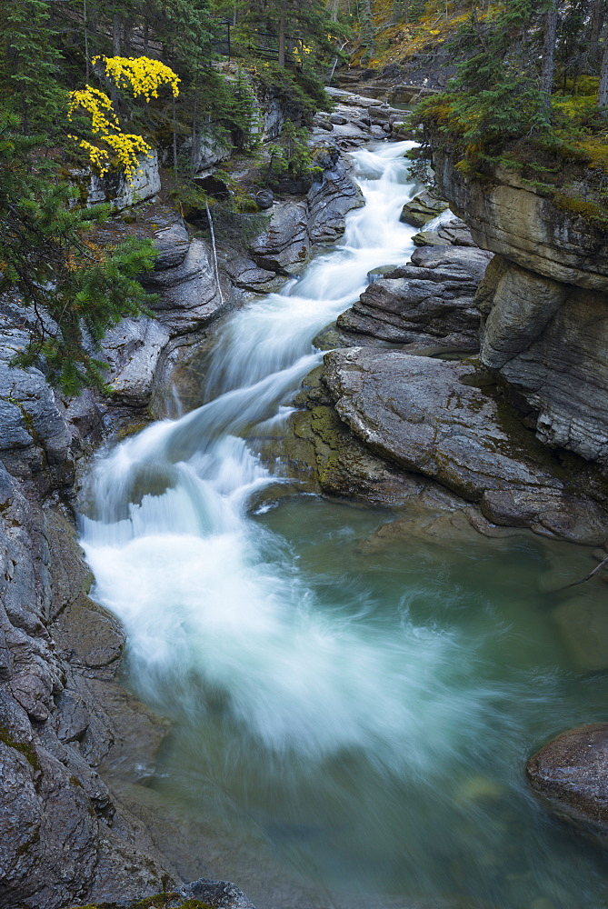 River flowing through Maligne Canyon with autumn foliage, Jasper National Park, Canada. waterfall, canyon, landscape