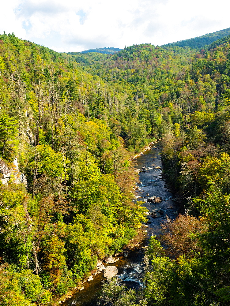 Linville River, Blue Ridge Mountains, Appalachia, North Carolina, United States of America, North America