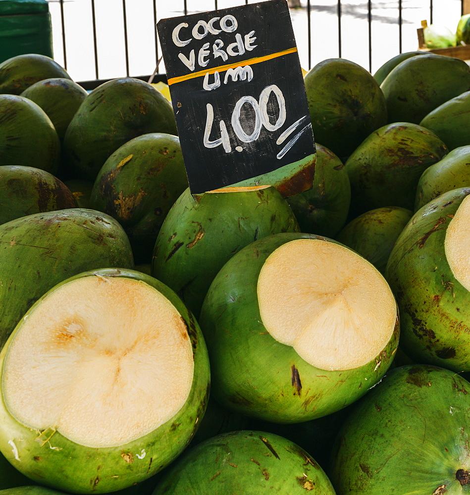 Ripe coconuts for sale in a street market in Rio de Janeiro, Brazil, South America - 1243-218