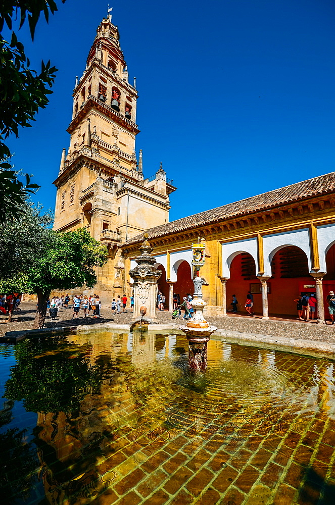 Bell Tower of La Mezquita (Great Mosque), UNESCO World Heritage Site, Cordoba, Andalucia, Spain, Europe - 1243-314