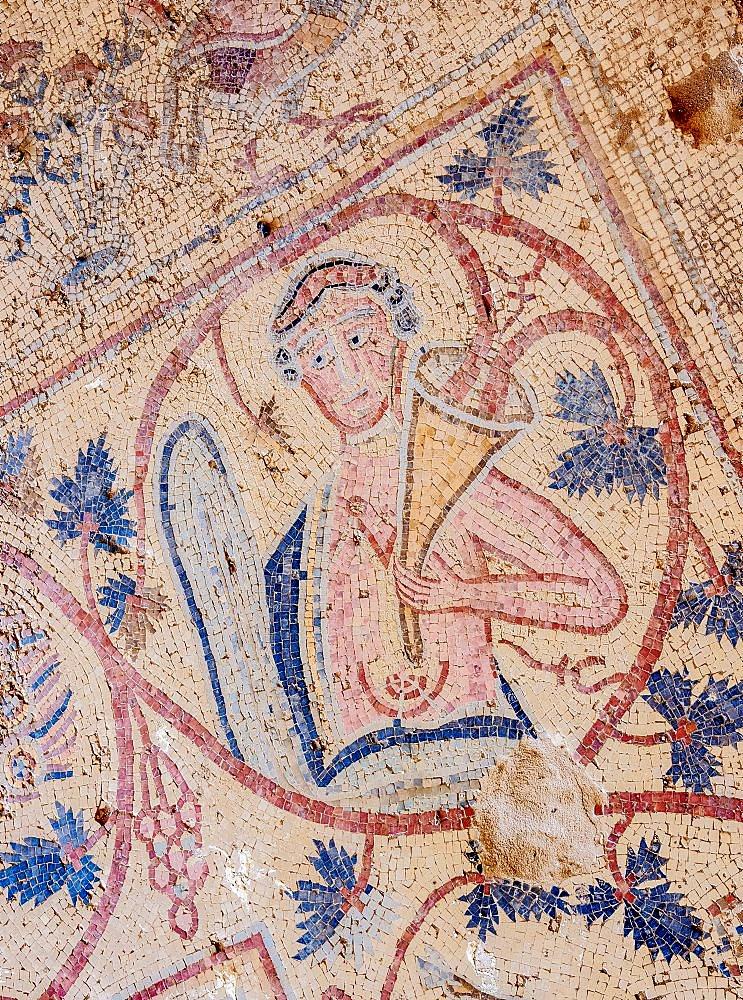 Mosaic Floor in Umm ar-Rasas, Amman Governorate, Jordan