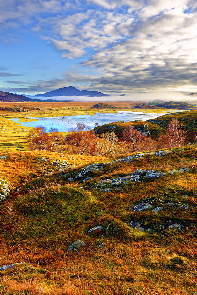 An autumn view of the colorful grass covered hills and moors of Kentra Bay as mist forms below the mountains on the far horizon
