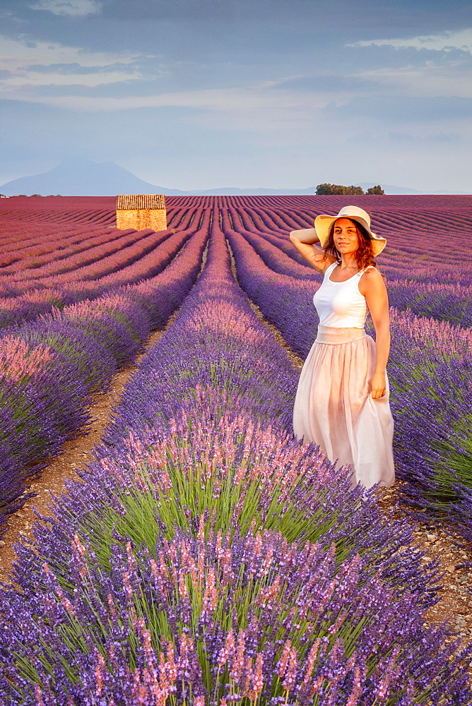 Woman with hat in lavender fields, Plateau de Valensole, Alpes-de-Haute-Provence, Provence-Alpes-Cote d'Azur, France, Europe